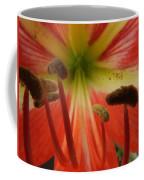 Inside Amaryllis Coffee Mug