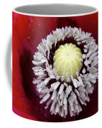 Inside Poppy Coffee Mug