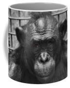 Intelligent Eyes Coffee Mug