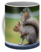 Interesting Tail Coffee Mug