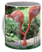 Intertwined Flamingoes Coffee Mug