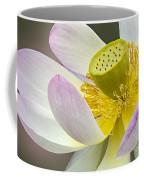Intimate Sacred Lotus Bloom Coffee Mug
