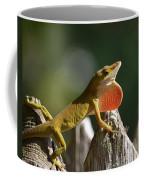Intimidated Anole Coffee Mug