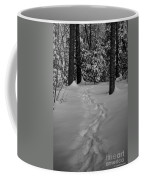 Into The Woods Pisgah Forest Black And White Coffee Mug