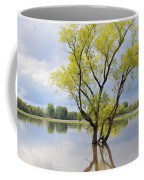 Iowa Flood Plains Coffee Mug