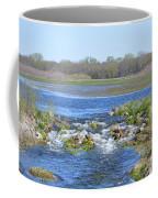 Iowa Has Its Beauty Coffee Mug