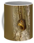 iPhone Squirrel In A Hole Coffee Mug
