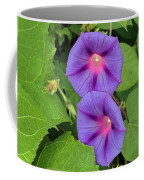 Ipomea Acuminata Morning Glory Coffee Mug