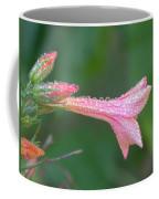 Ipomopsis Rubra Coffee Mug