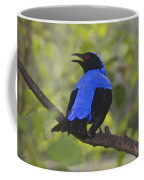 Irena Puella Asian Fairy Bluebird Coffee Mug