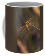 Iridescent Dragonfly Wings Coffee Mug