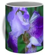 Iris 30 Coffee Mug