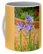 Iris Along The Walk Coffee Mug