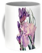 Watercolor Of An Elegant Tall Bearded Iris In Pink And Purple I Call Iris Joan Sutherland Coffee Mug