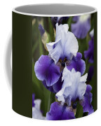 Iris Purple And White Fine Art Floral Photography Print As A Gift Coffee Mug