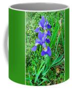 Iris Swirl Coffee Mug