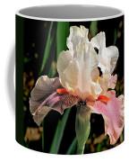 Iris White To Pink Coffee Mug