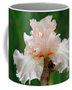 Iris With Dewdrops Coffee Mug