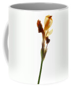 Iris Yellow Coffee Mug