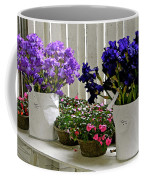 Irises And Impatiens Coffee Mug