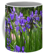 Irises In Spring Coffee Mug