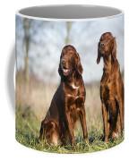 Irish Setters Coffee Mug
