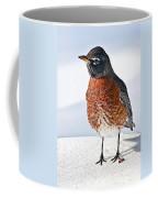 Is It Spring Yet? Coffee Mug