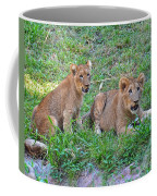 Is It Time To Play Catch Coffee Mug