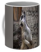 Is It You God Coffee Mug