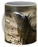 Island Lizards Three Coffee Mug