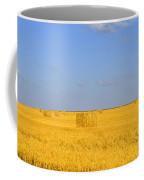 Israel Negev Habesor Landscape Coffee Mug
