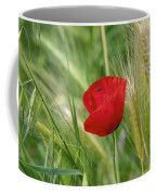 Italian Poppy Coffee Mug