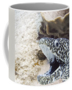 It's A Moray Coffee Mug