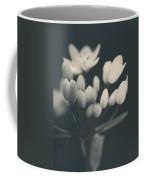 It's A New Life Coffee Mug