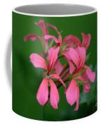 Ivy Geraniums Coffee Mug