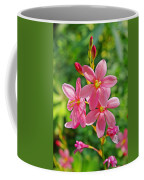 Ixia Flower Coffee Mug
