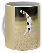 Jack Russell Jumping For Ball Coffee Mug