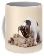 Jack Russell Terrier Puppy And Kitten Coffee Mug