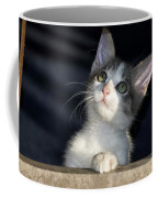 Jackson Is Always Inquisitive Coffee Mug