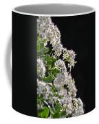 Jade Plant Flowers Coffee Mug