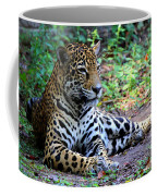 Jaguar Resting From Play Coffee Mug