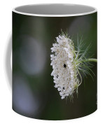 jammer Garden Lace 2 Coffee Mug