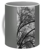 January Tree Coffee Mug