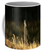 January's Gold 2013 Coffee Mug
