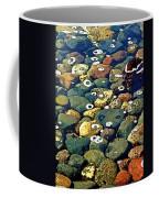 Japanese Garden Pool Rocks Coffee Mug