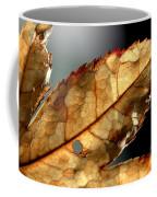 Japanese Maple Leaf Brown - 4 Coffee Mug