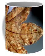 Japanese Maple Leaf Brown - 1 Coffee Mug