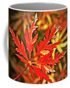 Japanese Maple Leaf  Coffee Mug
