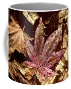 Japanese Maple Tree Leaves Coffee Mug
