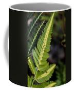 Japanese Painted Fern Coffee Mug